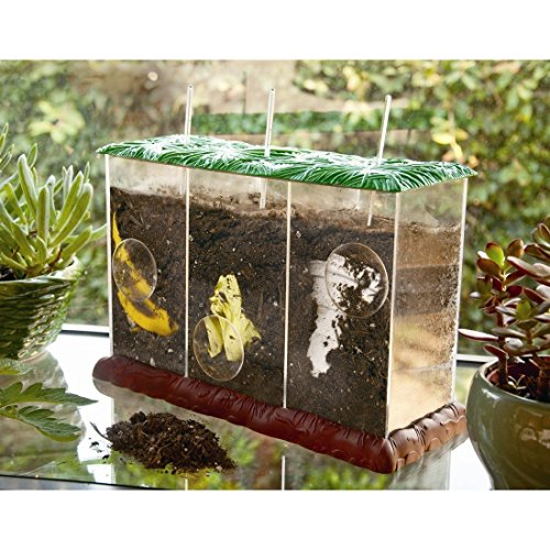Buy Discount TWWT Compost Container
