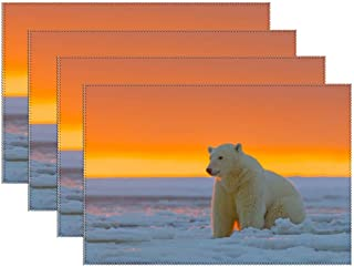 Yilooom Placemats Set of 4,Polar Bear Alaska Snow Canvas Table Mats Washable Fabric Placemats for Kitchen Dining Table Decoration 12 X 18 Inches