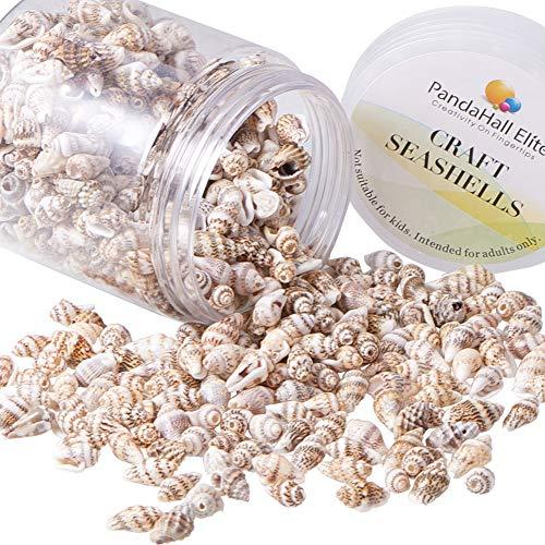 PandaHall Elite etwa 185 g/Box Kleine Spirale Muschel Perlen Natürliche Muschel Charms für Anhänger DIY Handwerk Machen Home Party Dekoration, Loch: 1mm, Weizen