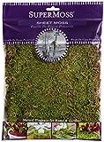 SuperMoss (21580) Sheet Moss Dried, Natural, 2oz