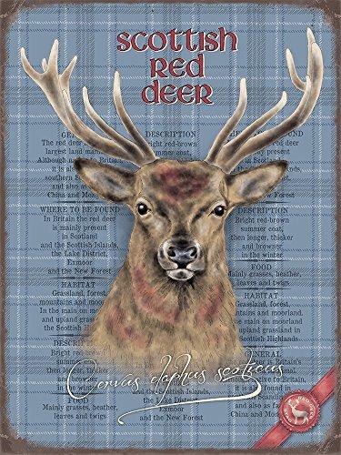 écossais Cerf Rouge rétro plaque en métal 15 x 20 cm