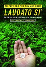 On Care for Our Common Home, Laudato Si': The Encyclical of Pope Francis on the Environment with Commentary by Sean McDonagh