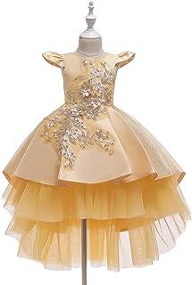 Luxury Children Princess Dress Flower Girl Dress Tutu Wedding Veil Trailing Piano Performance Clothing Girls Dress Princess Dress Catwalk Moderator ryq (Color : Khaki, Size : 130cm)