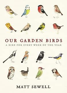 wild bird and garden