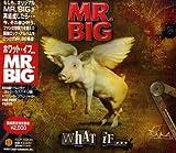 Songtexte von Mr. Big - What If...