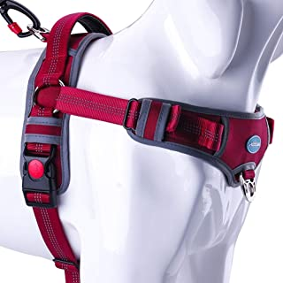 ThinkPet No Pull Harness Breathable Sport Harness - Escape Proof/Quick Fit Reflective Padded Dog Safety Vest with Handle Back/Front Clips, Easy for Walking Training