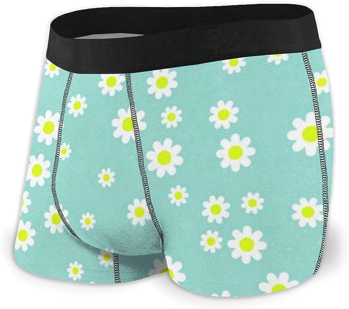 Mens Boxer Briefs Seamless Daisy Flower Light Blue Breathable Underwear