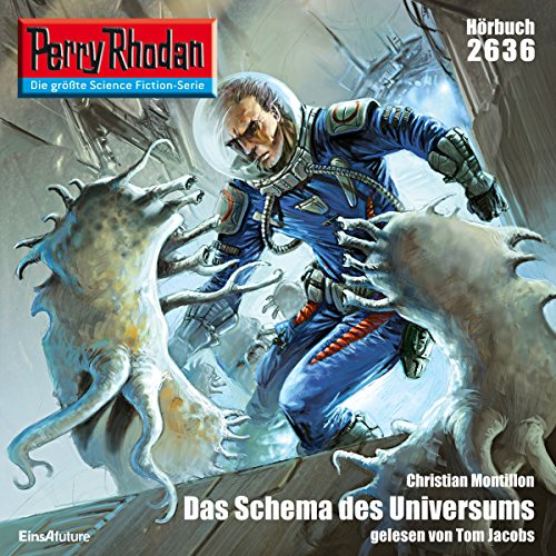 Das Schema des Universums audiobook cover art