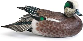 Wigeon 13 x 6 inch Limited Edition Collector's Item Wooden Decoy