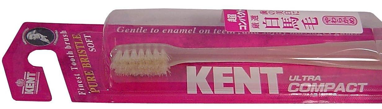 ギター記念速報KENT 白馬毛歯ブラシ 超コンパクトヘッド やわらかめ KNT-0132 ×10個セット