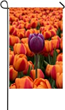 MJG Garden Flag Tulips Flower Bed Contrast 12x18 Inches(Without Flagpole)