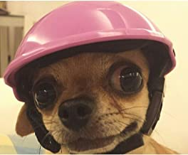 Best dog bicycle helmet Reviews