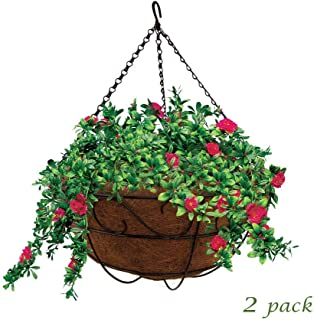 Best 16 inch hanging baskets Reviews