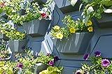 palram 70228 - ricoprimento verticale da giardino, 57.2 x 52.8 x 9.7, area di copertura 114 x 52.2 cm, pacco da 2 pezzi