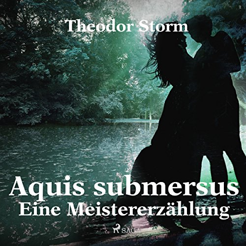 Aquis submersus     Eine Meistererzählung              By:                                                                                                                                 Theodor Storm                               Narrated by:                                                                                                                                 Klaus Dieter König                      Length: 2 hrs and 46 mins     Not rated yet     Overall 0.0
