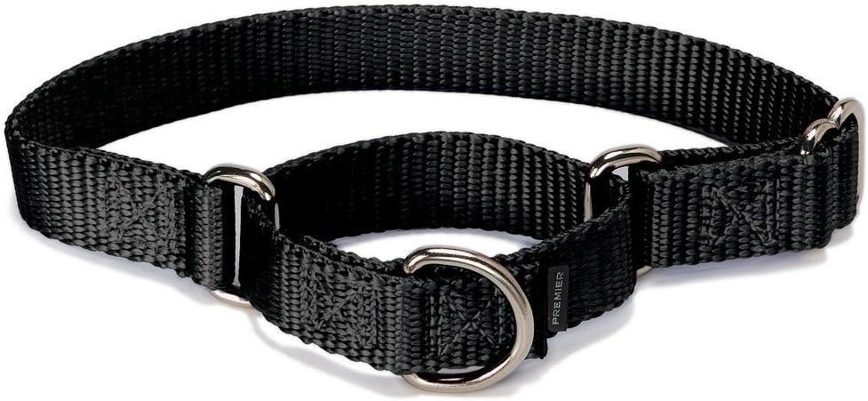 PetSafe Popular popular Martingale Dog Collar Max 54% OFF to Choke Alternative