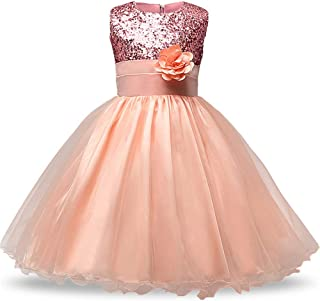 GFDGG フラワーページェントパーティーチュチュ刺繍プリンセスドレス子供衣装ドレス女の子プリンセス (色 : ピンク, サイズ : 130cm)
