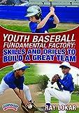 Ray lokar Fundamentos de la fábrica para jóvenes de béisbol: Técnicas y ejercicios para...