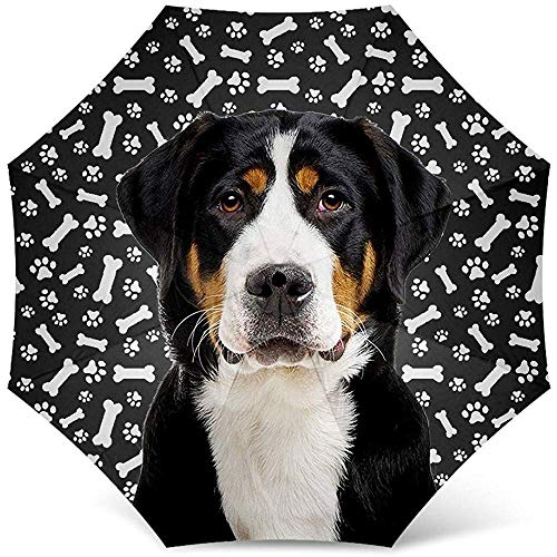 Greater Swiss Dog Print Regenschirm - Windproof Travel Folding Golf Umbrella - Best Dog Mom Geschenke
