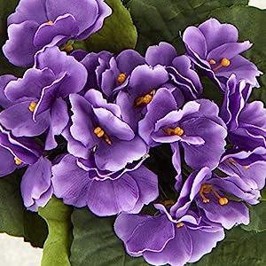 Silk Flower Arrangements Lavender Artificial African Violet Silk Flower Bushes   3 Individual Silk Bushes