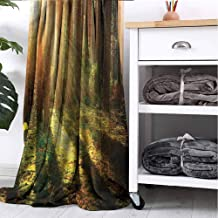 GAJIOE DIY Printing Throw Blanket Woodland Sofa Camping Reading car Travel Peaceful Pine Tree Bunch W40 xL60