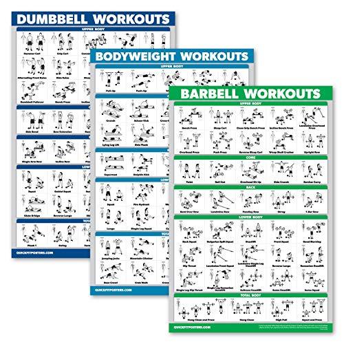 "\""QuickFit 3er-Pack – Hantel-Workouts + Bodyweight Übungen + Langhantel-Übungen – Set mit 3 Trainingstabellen, laminiert, 18\"" x 27\""\"""