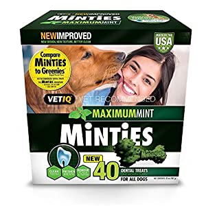 Vetiq Minties Dog Dental Bone Treats, Dental Treats For Dogs, Medium/Large, 24Oz