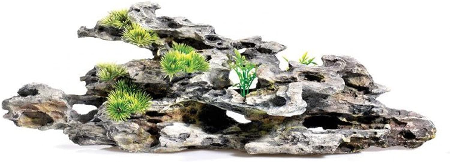 Caldex Classic Driftwood Delights Driftwood with Plants 160mm