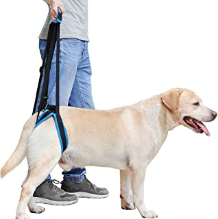 Rantow Adjustable Pet Dogs Lift Support Harness Breathable Mesh Padded Sling Straps Canine Support Rehabilitation for Injuries Arthritis Weak hind Legs & Joints, Blue