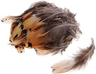 Baoblaze 100 Pack Natural Chicken Feathers Plume for Fascinator Hair Clip, Cocktail Hat, Dream Catcher Party Clothing Decoration Accessory DIY Crafts