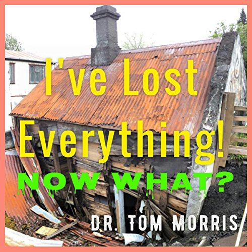 I've Lost Everything. . .Now What? audiobook cover art