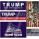 Trump 2020 Sticker 10 Pcs, Trump Bumper Stickers for Presidential Election - Five Different Sticker Designs (10 pcs)