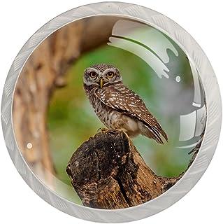 Cabinet Knobs Round Drawer Pulls 4 pcs Spotted Owlet for Dresser Drawer ,Cabinet