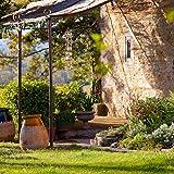 Relaxdays Windspiel mit Muscheln, maritimes Holz Klangspiel für Balkon, Garten-Deko, Capizmuschel Mobile, 107 cm, natur - 2