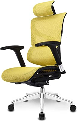 Amazon Com Adjustable Chairs Study Computer Chair Home Office Chair Game Esports Chair Wcg Net Chair Ergonomic Chair Commercial Boss Chair Living Room Swivel Chair Comfortable Office Chair Bearing Weight 150kg Furniture