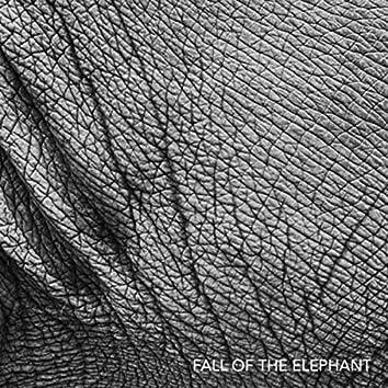 Fall of the Elephant