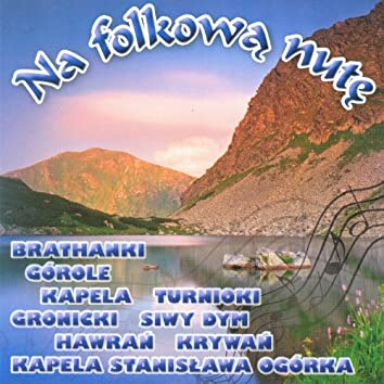 Na folkowa nute vol.1  (Highlanders Music from Poland)