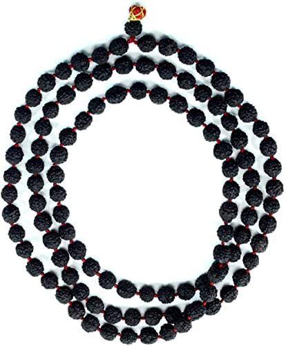 ASTRODIDI Black 5 Mukhi Rudraksha Mala Five Face Panch Mukha Rosary