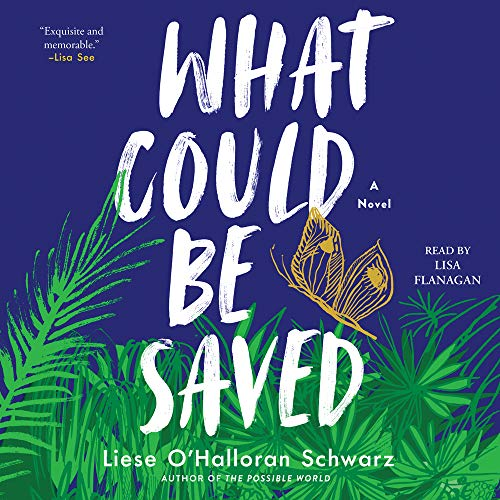 What Could Be Saved Audiobook By Liese O'Halloran Schwarz cover art