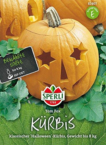 Sperli Kürbis 'Tom Fox'   klassischer Halloween-Kürbis   Päckchen Saatgut