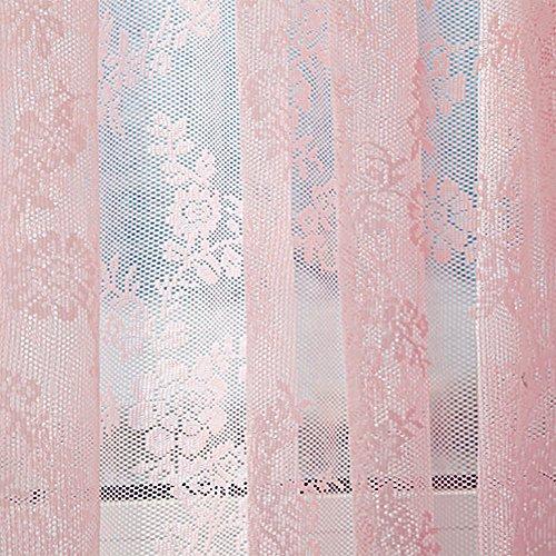 JIJI886 Tenda Tulle Tenda Tulle Cortina di Tulle Trasparente con Occhielli Doppia Tenda di Pizzo per Camera da Letto 180 cm x 145 cm (Rosa)