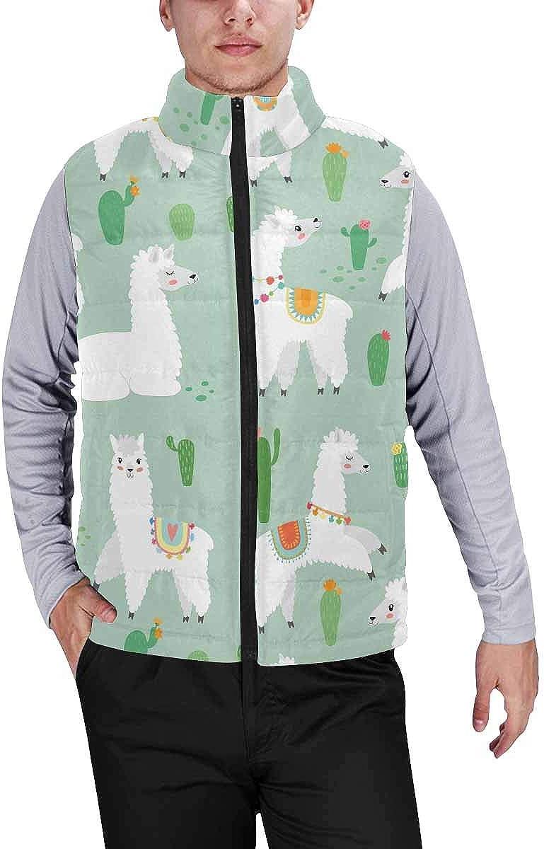 InterestPrint Men's Lightweight Sleeveless Jacket for Travel Hiking Running Cute Little Chubby Pug Dog