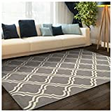 Superior Double Trellis Collection Area Rug, Attractive Rug with Jute Backing, Durable and Beautiful Woven Structure, Contemporary Geometric Trellis Rug - 8' x 10'