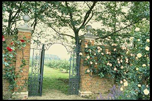Metalen bord Engels Country Gardens Uk Gb 131088 Klimrozen Naast Smeedijzeren Poort A4 12x8 Aluminium