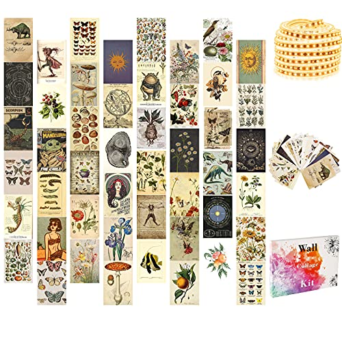 Wall Collage Kit, Aesthetic Room Decor with LED Strip Lights, Posters for Room Aesthetic, Indie Photo Wall Decorations for Teen Girls, Dorm Trendy Wall Art, 50 Set 4x6 inch