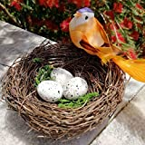Moent Home Decor Delight eShop, Maison de nid d'oiseau à la Main (Vigne), Maison Nature Craft pour Weddin Craft Nature Room Decor