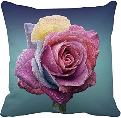 Amazon.com: Saras Garden Petal Decorative Throw Pillow. 17 ...