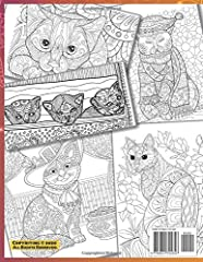 Whimsical Fantasy Cats - Adult Coloring Book #1