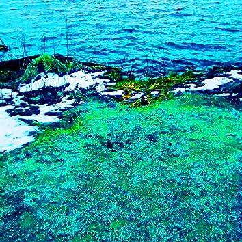Lake Meditations