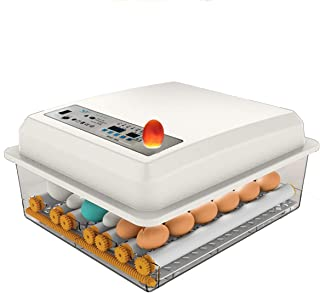 Egg Incubator 6 Egg, Poultry Incubators Chicken Incubator Automatic Turning Automatic Hatcher Machine Egg Boxes, Temperatu...